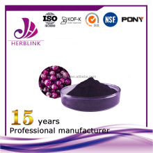 Alibaba best sellers plant extract collagen powder maqui berry powder