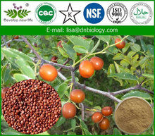 Organic goji extract powder/organic goji berry powder/wolfberry extract
