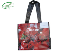 Wholesale cheap reusable laminated folding foldable promotional polyester pp non woven shopping bag