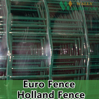 ISO certificated Wavy mesh/Plastic coated Euro fence with high quality(Manufacturer)Hot sale