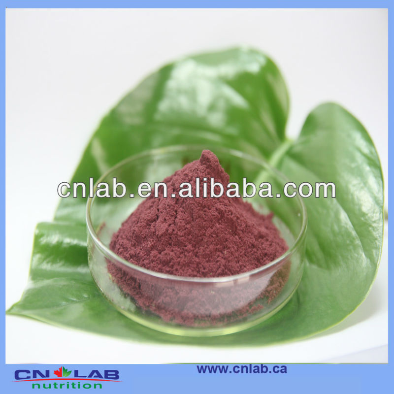 Certificated dried cranberry powder nutritional supplements