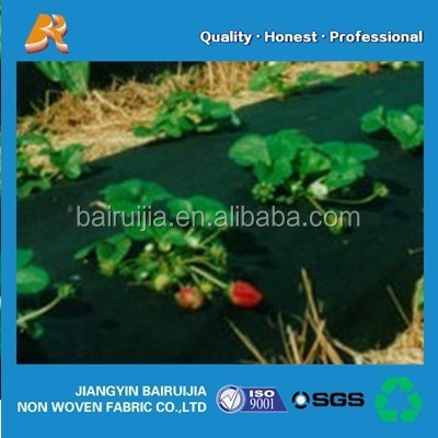 PP spunbond UV protection non-woven fabric for agriculture