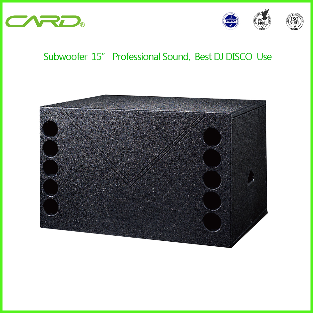 DJ equipment active speaker subwoofer professional