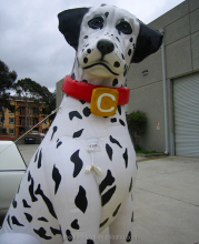 giant inflatable dalmatian for advertising