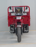 Heavy loading Chinese cheap new style cargo three wheel motorcycle for sale