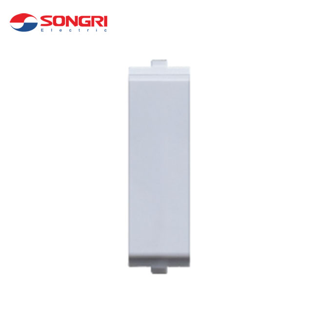 Songri Promotional function 12mm electric wall switch blank plate