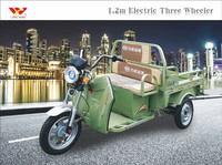 China manufacturer electric auto rickshaw