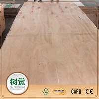2mm Eucalyptus/Hardwood Packing Plywood