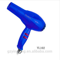 High quality professional Hotel , Travel, household Hair Dryer