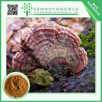 Natural Turkey Tail Mushroom Extract and Turkey Tail Mushroom Powder Extract Turkey Tail 30% Polysaccharides UV