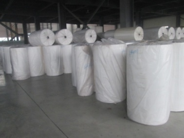 Finished Products (for Non-Woven Fabric)
