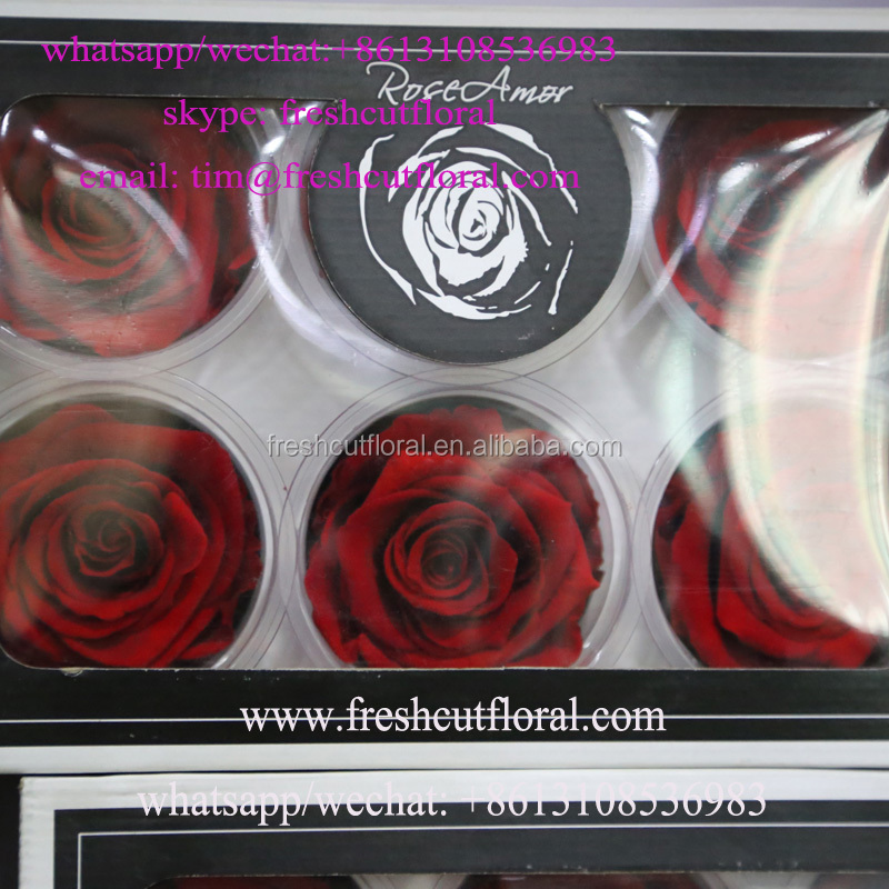 Haggle Preserved Wholesale Roses Flower Gift In Stock All The Year For Florists That Deliver