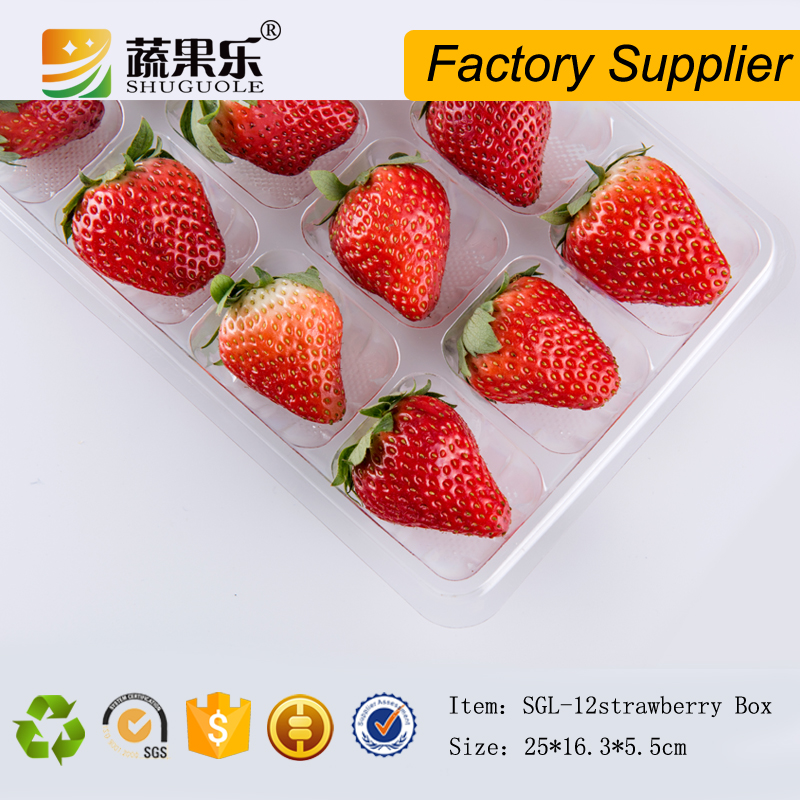 Disposable clear plastic strawberry containers 12pcs