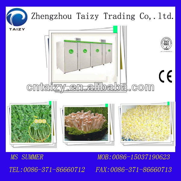 Chinese Toon sprout machine/soya bean sprout machine