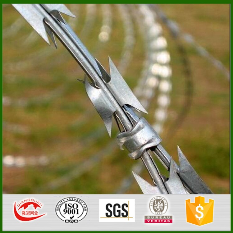 galvanized razor wire BTO22 600mm roll diameter 56loops 10-11M with clips razor wire installation