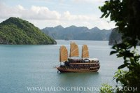 Halong phoenix cruise 2 days 1 night only $ 115
