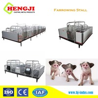 Pig farming equipment PVC panel galvanized pipe farrowing crate cages