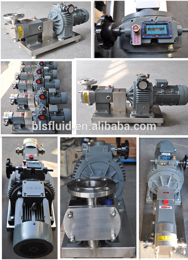 Zhejiang L&B Oil sanitary stainless steel electric colloid pumps(0.55KW-22KW)