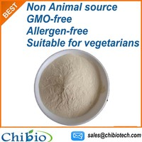 Non Animal Mushroom Chitin Chitosan Powder