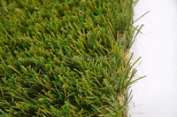 Landscaping grass for garden decoration