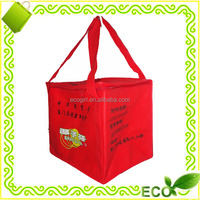 wholesale custom cheap price insulated thermal cooling silk screan printed pp non woven beer cooler bag