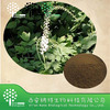 GMP Manufacturer 100% Natural Black Cohosh Extract Powder Triterpenoid Saponins 2.5%8%