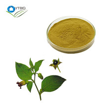 Free sample Belladonna Liquid Extract scopolamine 0.7%-1% supplier in bulk,Wholesale grape seed extract supplier