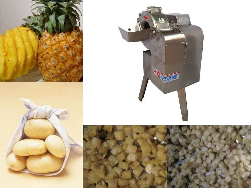 2015 new nicer industrial multifunctional fruit and vegetable dicer