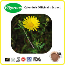 natural calendula officinalis flower extract / Calendula extract powder /10:1 Calendula Officinalis Extract
