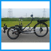 Folding Steel Frame Heavy Duty Threee Wheel 250W and 500W Electric Recumbent Tricycle Trike
