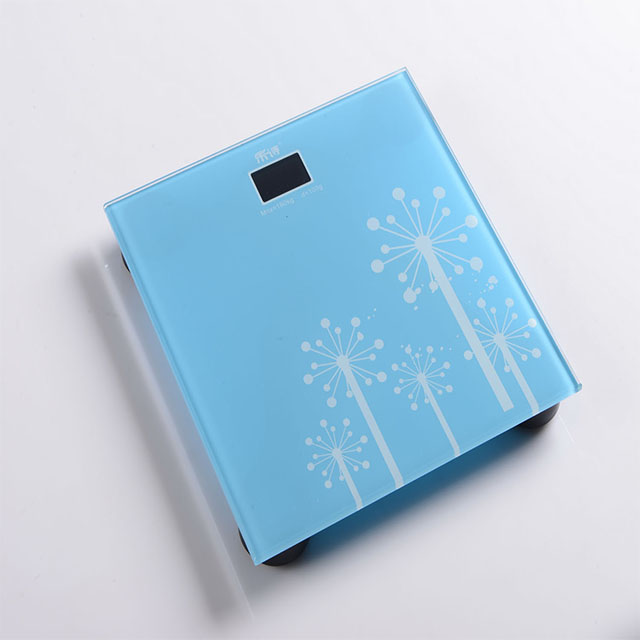 body composition monitor Mechanical Personal Scale