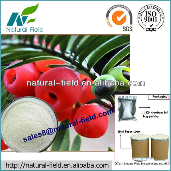 ISO factory supply Taxol 99% (Chinese Yew Extract) ,CAS NO : 33069-62-4