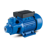 Household Application kw Peripheral Electrical Micro Vortex Water Pump 1/2 hp