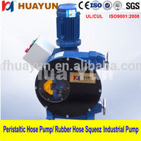 Electric Manual Control Stationary Concrete Pump for Sale High quality Peristaltic Hose Pump