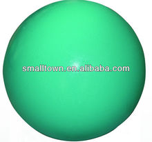 Adult Exercise Ball