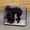 40x52x34cm Folding Dog Kennel /welded wire dog crate