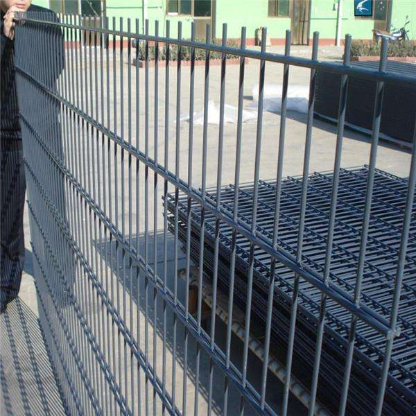 Ornamental Powder Coated Double Wire Garden Wire Mesh Fence