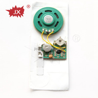 Music record sound module/music audio recording chip