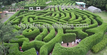 durable Chinese goods wholesale artificial faux boxwood hedge topiary in real touch