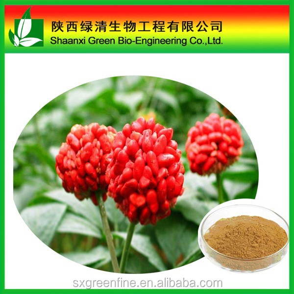 Top quality Sanchi P.E. with Panax Notoginsenosides