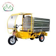 1500W enclosed cargo adult 3 wheel electric Motorcycle
