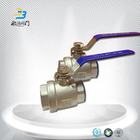 Mini 2 Piece Ball Valve Stainless Steel