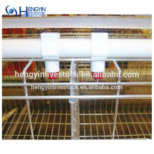 Low cost 4 tier broiler farm equipment chicken cages poultry farm layer quail cage for South Africa