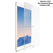 9H Full Screen Screen Protector Tempered Glass For ipad pro