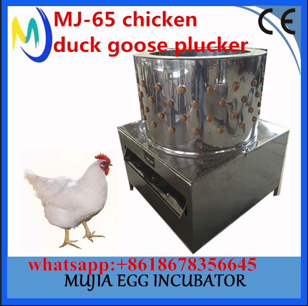 Birds slaughterhouse MJ-65 chicken duck goose plucker