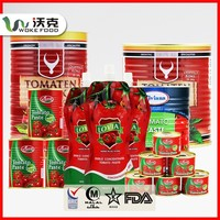 Direct Factory Price Shelf Life 2 Years Brix 28-30% Tomato Paste
