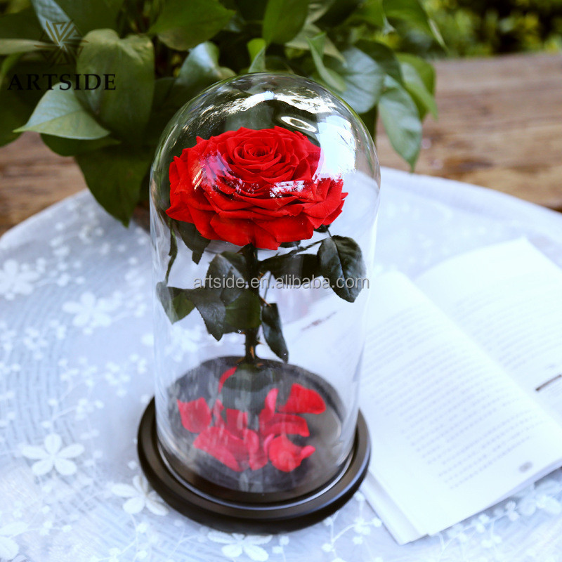 Fashion Home Decor Good Quality Preserved Roses Big Size In Glass Dome,Preserved Fresh <strong>Flowers</strong>