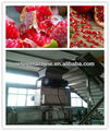 Pomegranate arils processing machine