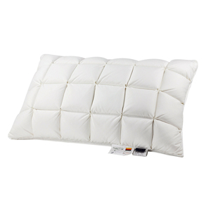 Guangdong manufacturer luxury super soft box pattern custom hotel sleep goose down pillow