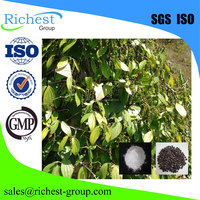 factory supply natural 95% piperine